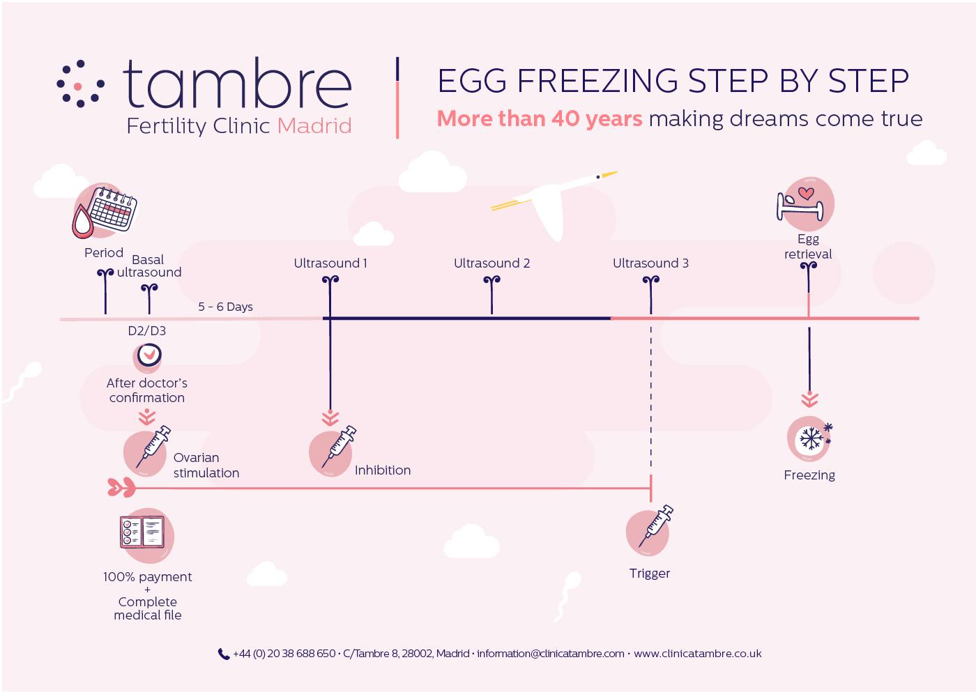 egg freezing